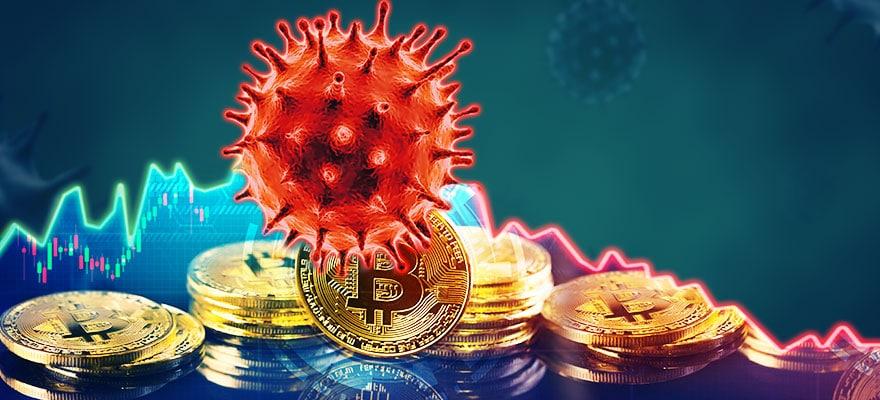pandemia btc